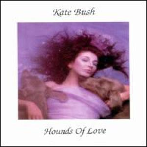 COVER: Hounds of Love